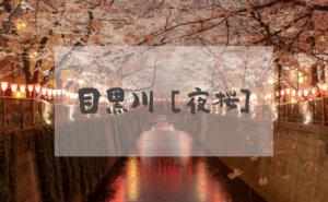 目黒川で花見(ヘッダー)